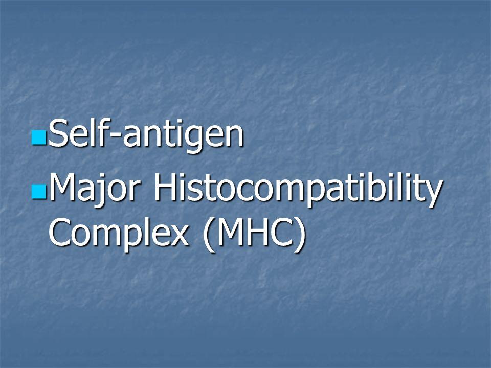 Self-antigen Major Histocompatibility Complex (MHC)