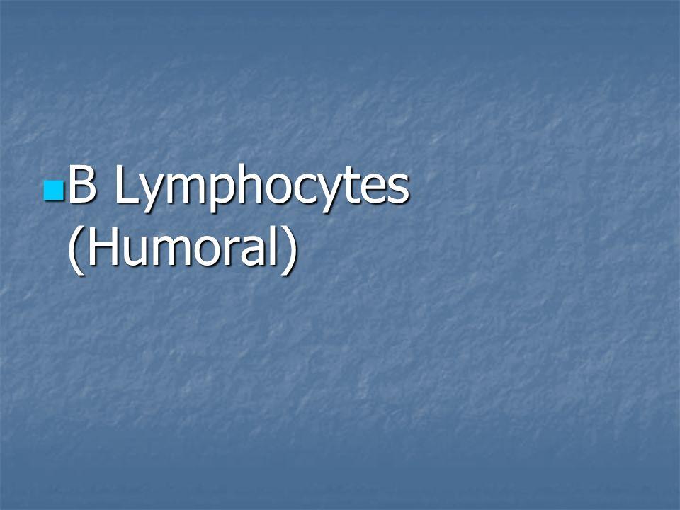 B Lymphocytes (Humoral)