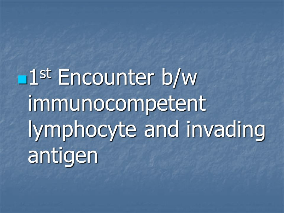 1st Encounter b/w immunocompetent lymphocyte and invading antigen