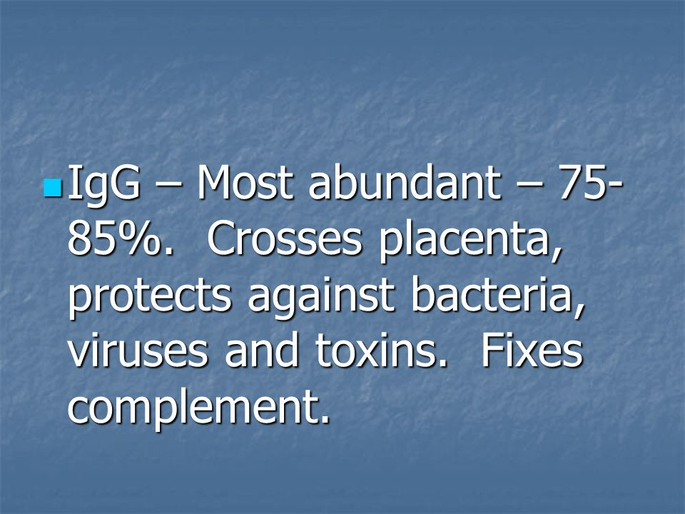 IgG – Most abundant – 75-85%. Crosses placenta, protects against bacteria, viruses and toxins.