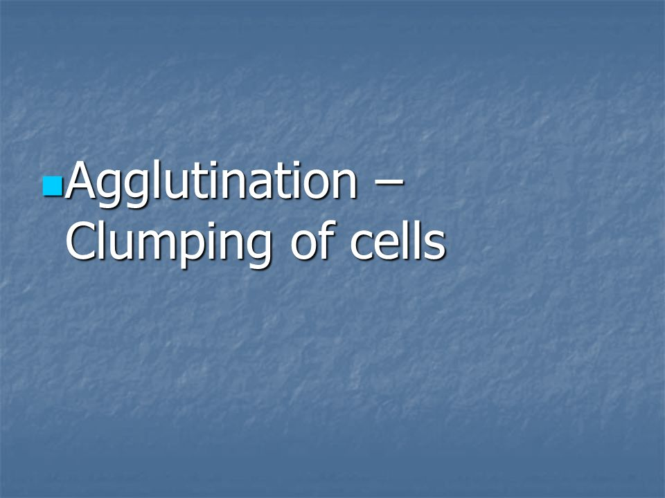 Agglutination – Clumping of cells