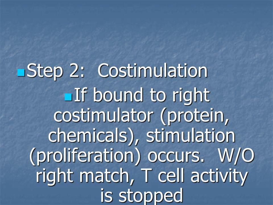 Step 2: Costimulation