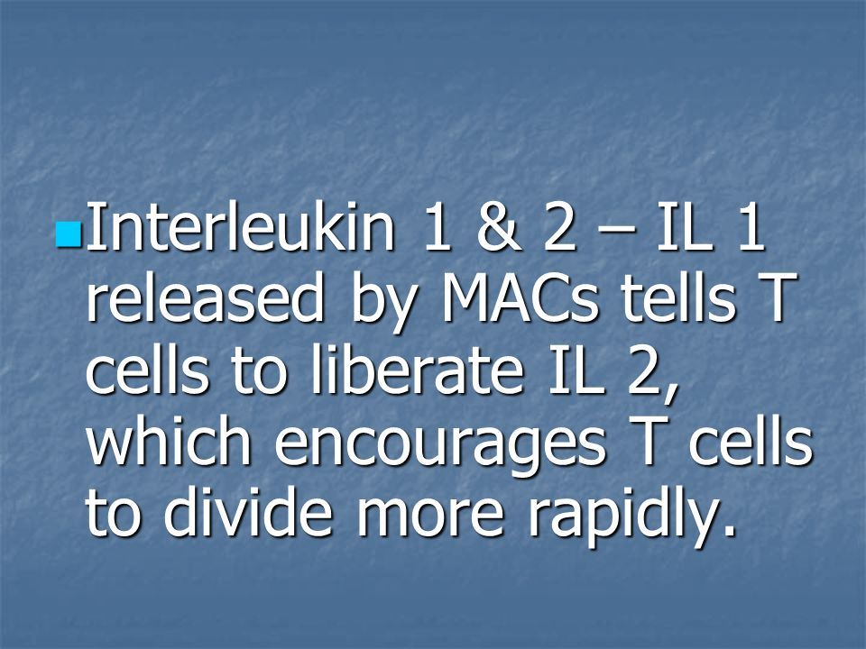 Interleukin 1 & 2 – IL 1 released by MACs tells T cells to liberate IL 2, which encourages T cells to divide more rapidly.