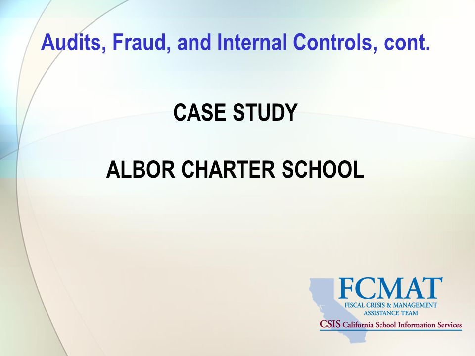 Audits, Fraud, and Internal Controls, cont.