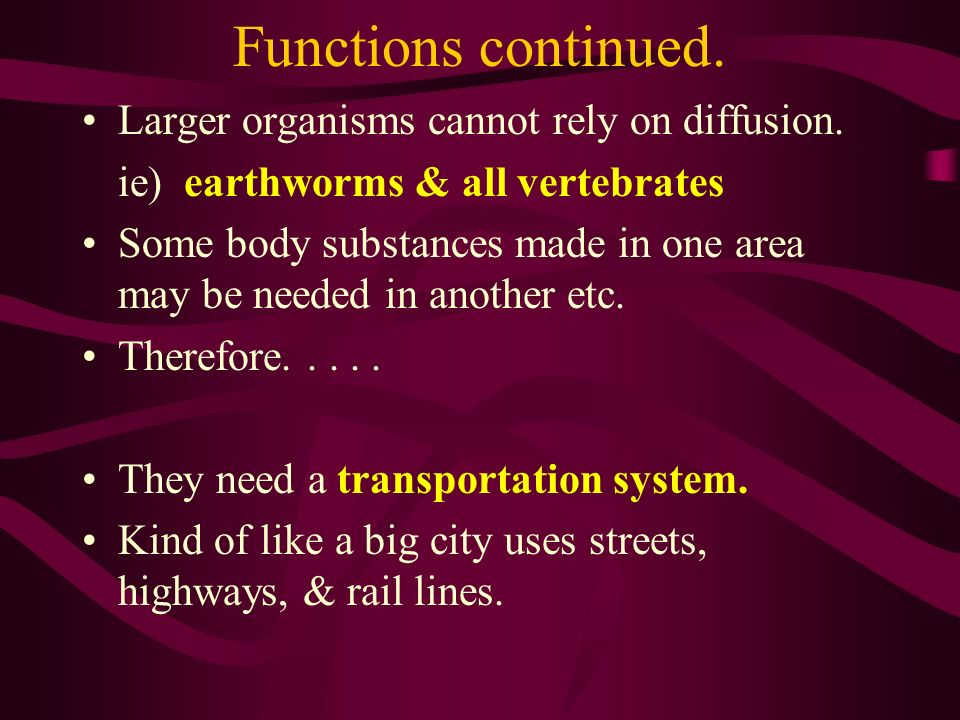 Functions continued. Larger organisms cannot rely on diffusion.