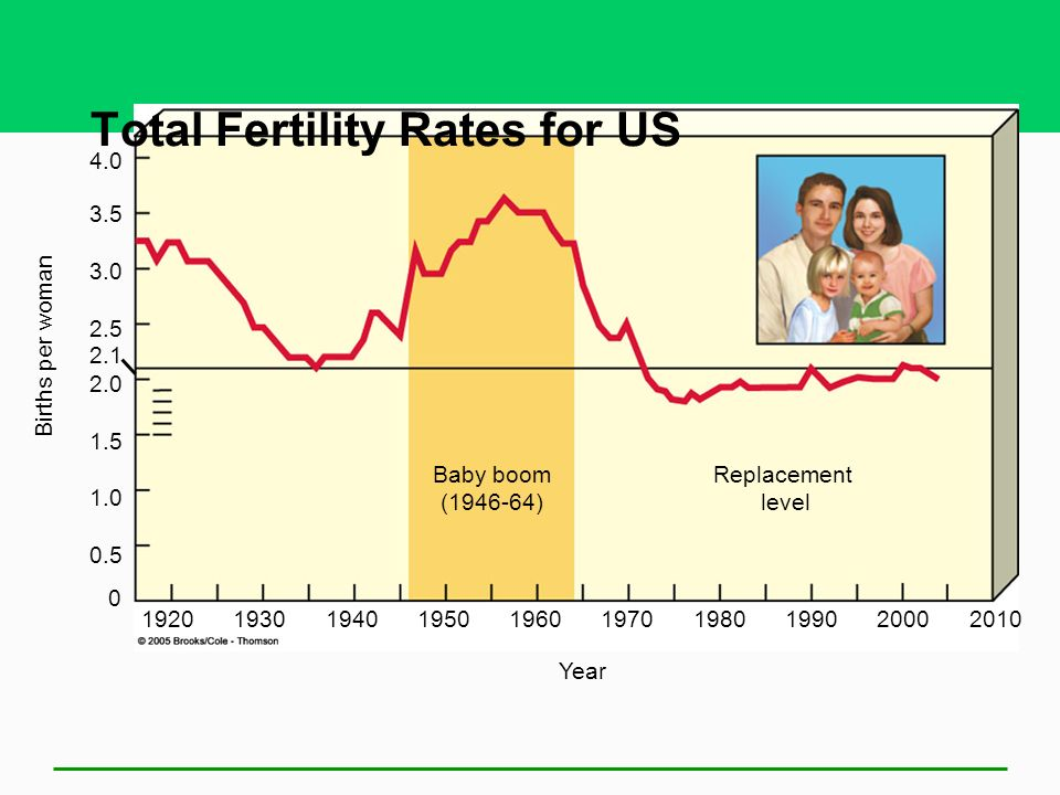 Total Fertility Rates for US