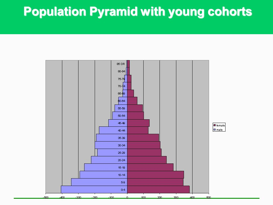 Advantages and Disadvantages of Youthful Populations - AP/IB Geography