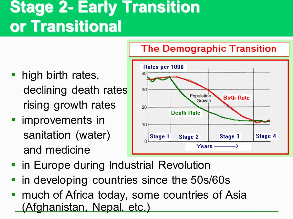 Stage 2- Early Transition or Transitional