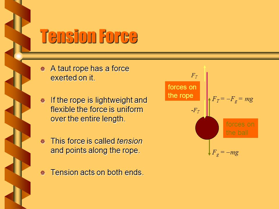 Tension Force A taut rope has a force exerted on it.