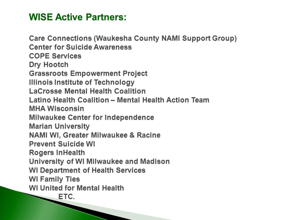 WISE Active Partners: Care Connections (Waukesha County NAMI Support Group) Center for Suicide Awareness COPE Services Dry Hootch Grassroots Empowerment Project Illinois Institute of Technology LaCrosse Mental Health Coalition Latino Health Coalition – Mental Health Action Team MHA Wisconsin Milwaukee Center for Independence Marian University NAMI WI, Greater Milwaukee & Racine Prevent Suicide WI Rogers InHealth University of WI Milwaukee and Madison WI Department of Health Services WI Family Ties WI United for Mental Health ETC.