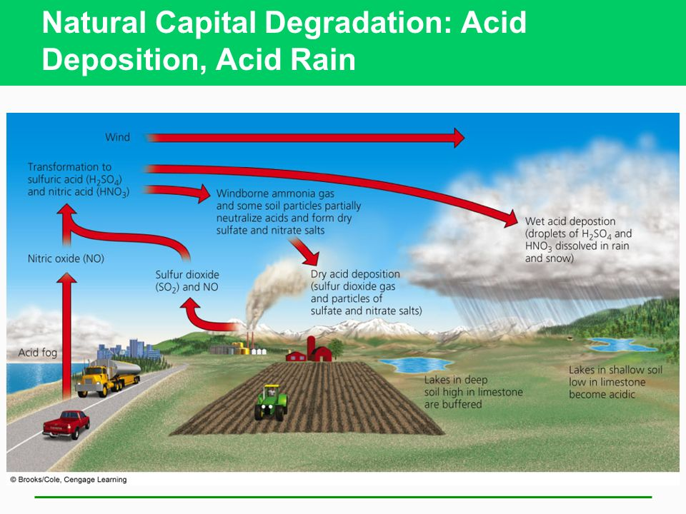 Natural Capital Degradation: Acid Deposition, Acid Rain