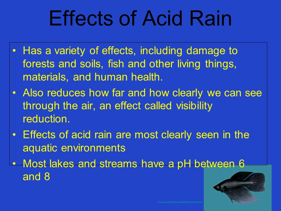 Effects of Acid Rain Has a variety of effects, including damage to forests and soils, fish and other living things, materials, and human health.