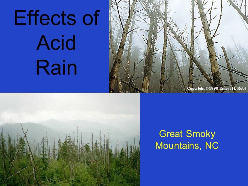 the effects of acid rain on the adirondacks