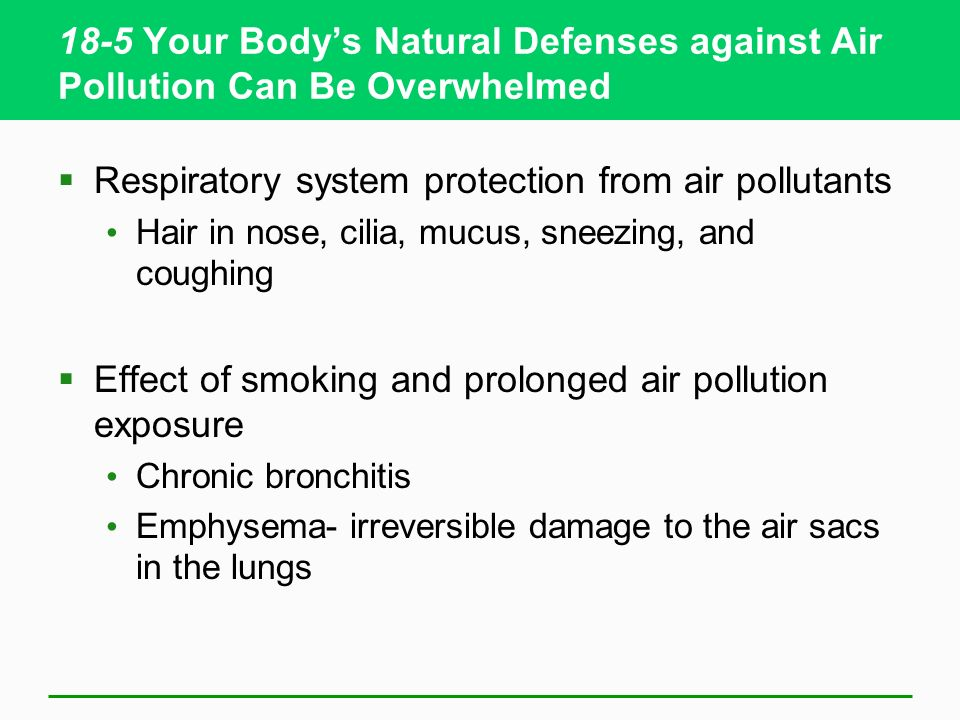 Respiratory system protection from air pollutants