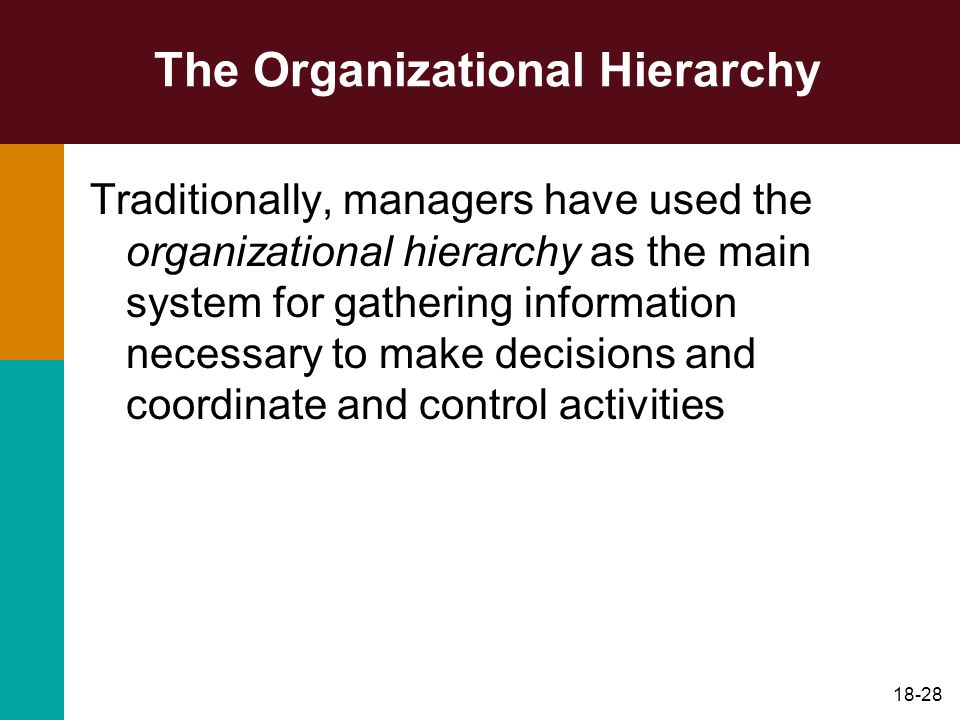 The Organizational Hierarchy