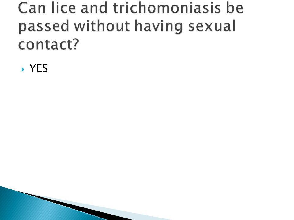 Can lice and trichomoniasis be passed without having sexual contact
