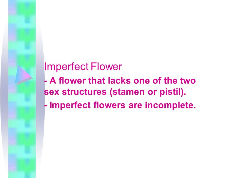 Imperfect Flower - A flower that lacks one of the two sex structures (stamen or pistil).