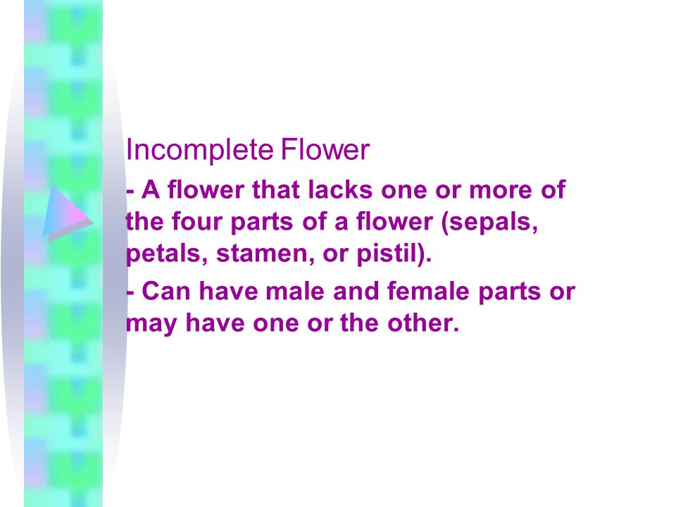 Incomplete Flower - A flower that lacks one or more of the four parts of a flower (sepals, petals, stamen, or pistil).