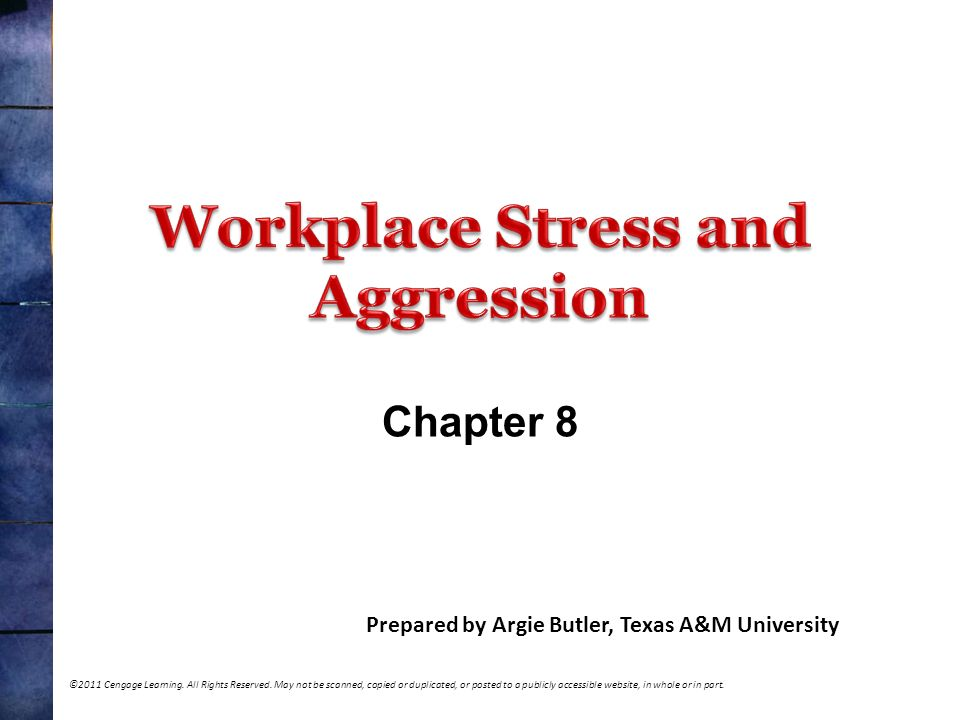 Workplace Stress and Aggression