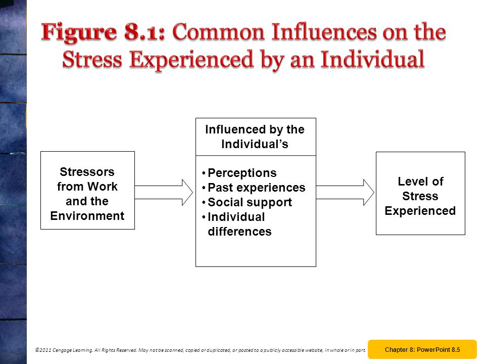 Figure 8.1: Common Influences on the Stress Experienced by an Individual