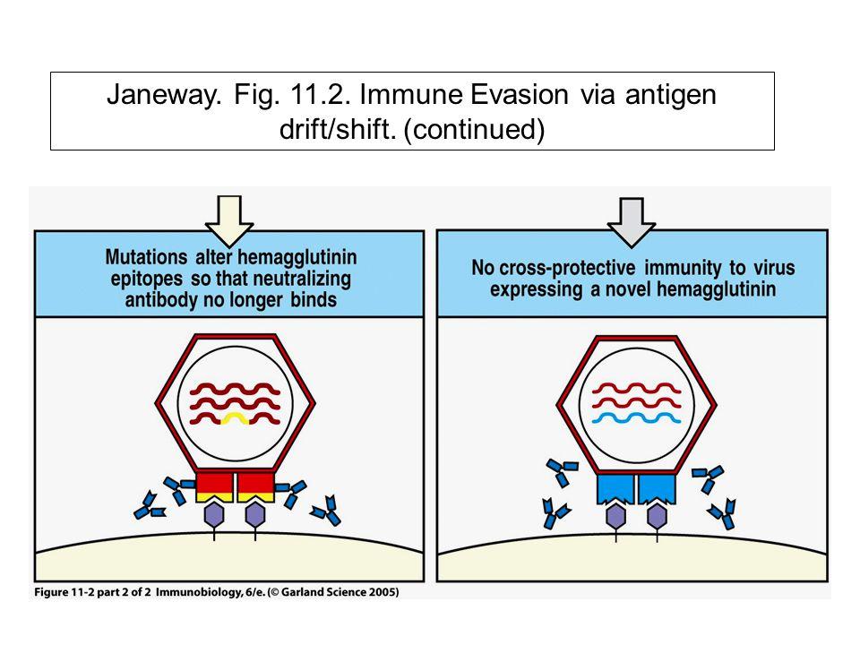 Janeway. Fig. 11. 2. Immune Evasion via antigen drift/shift