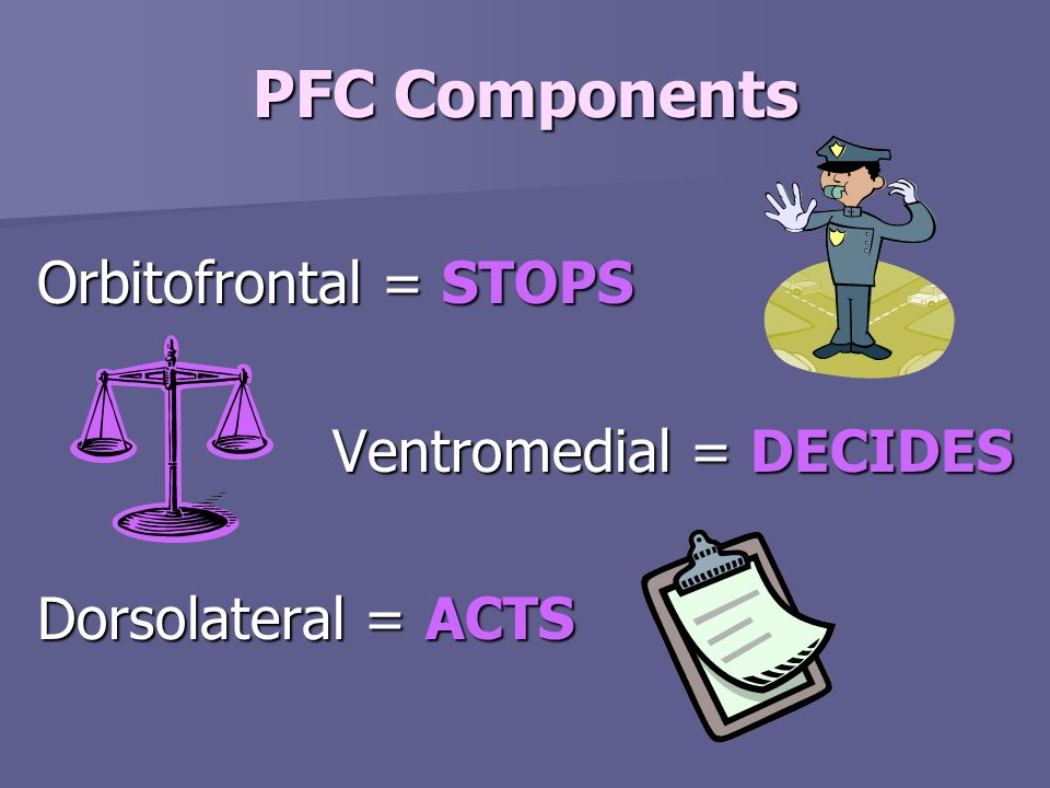 PFC Components Orbitofrontal = STOPS Ventromedial = DECIDES