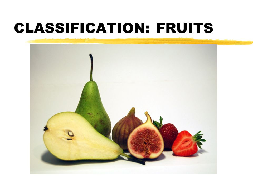 CLASSIFICATION: FRUITS