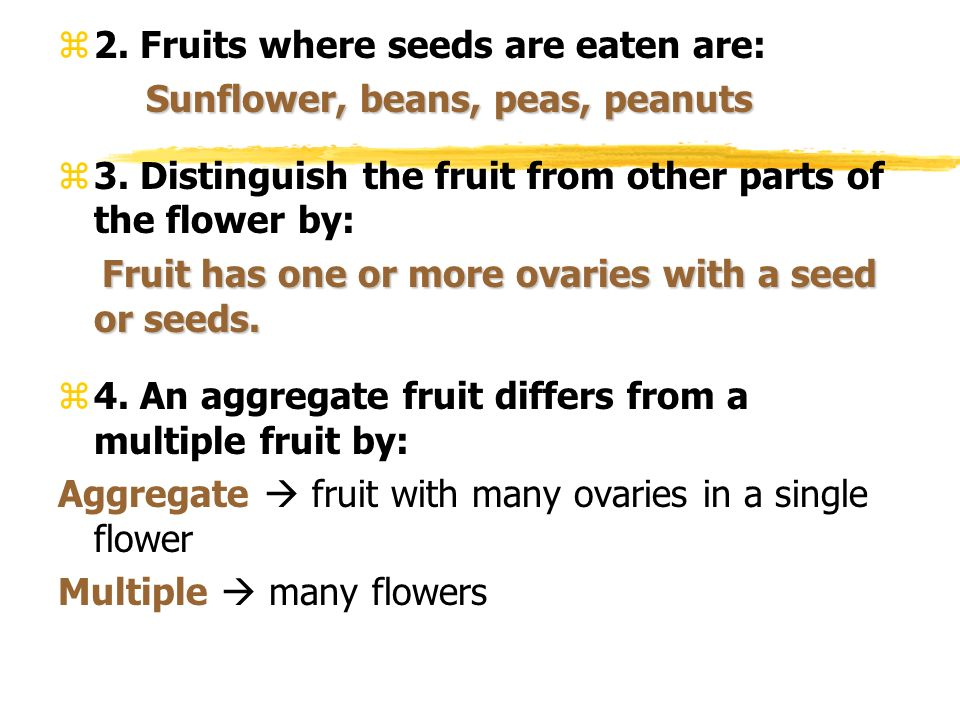 2. Fruits where seeds are eaten are: