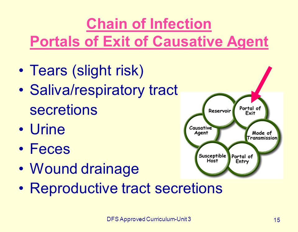 Chain of Infection Portals of Exit of Causative Agent