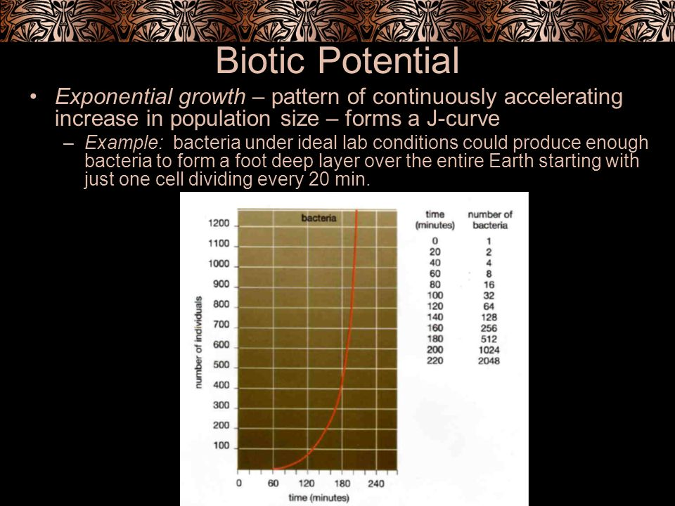 Biotic Potential Exponential growth – pattern of continuously accelerating increase in population size – forms a J-curve.
