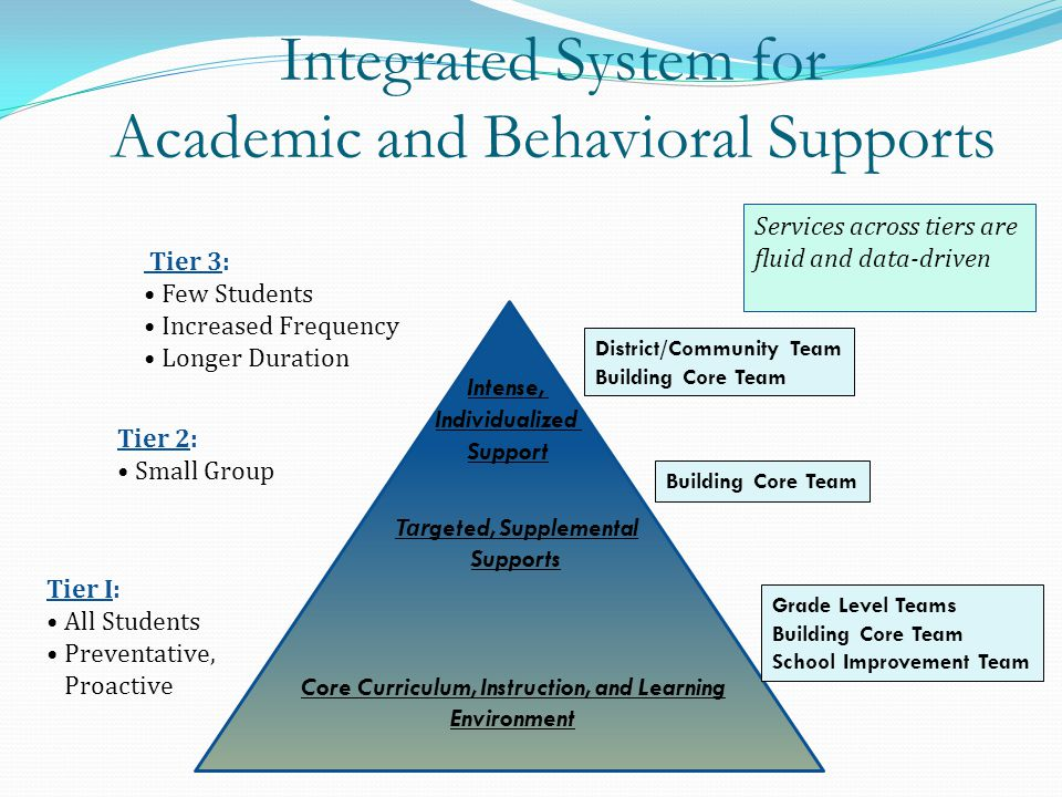 Integrated System for Academic and Behavioral Supports