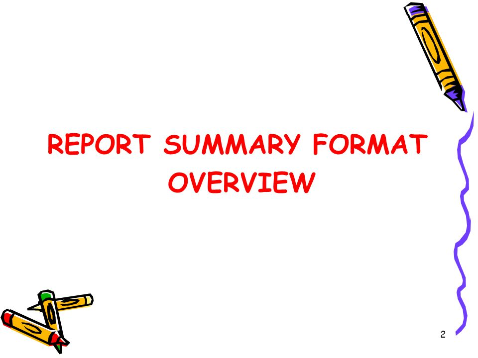 REPORT SUMMARY FORMAT OVERVIEW