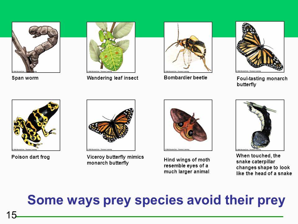Some ways prey species avoid their prey