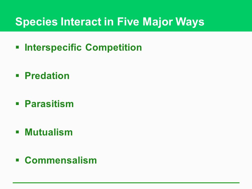 Species Interact in Five Major Ways