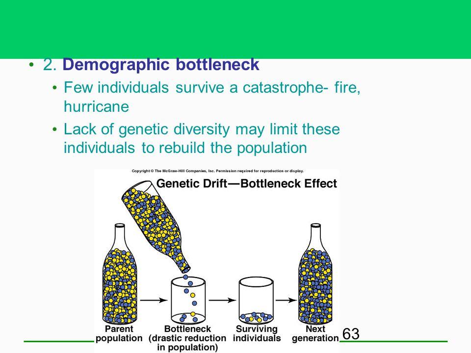 2. Demographic bottleneck