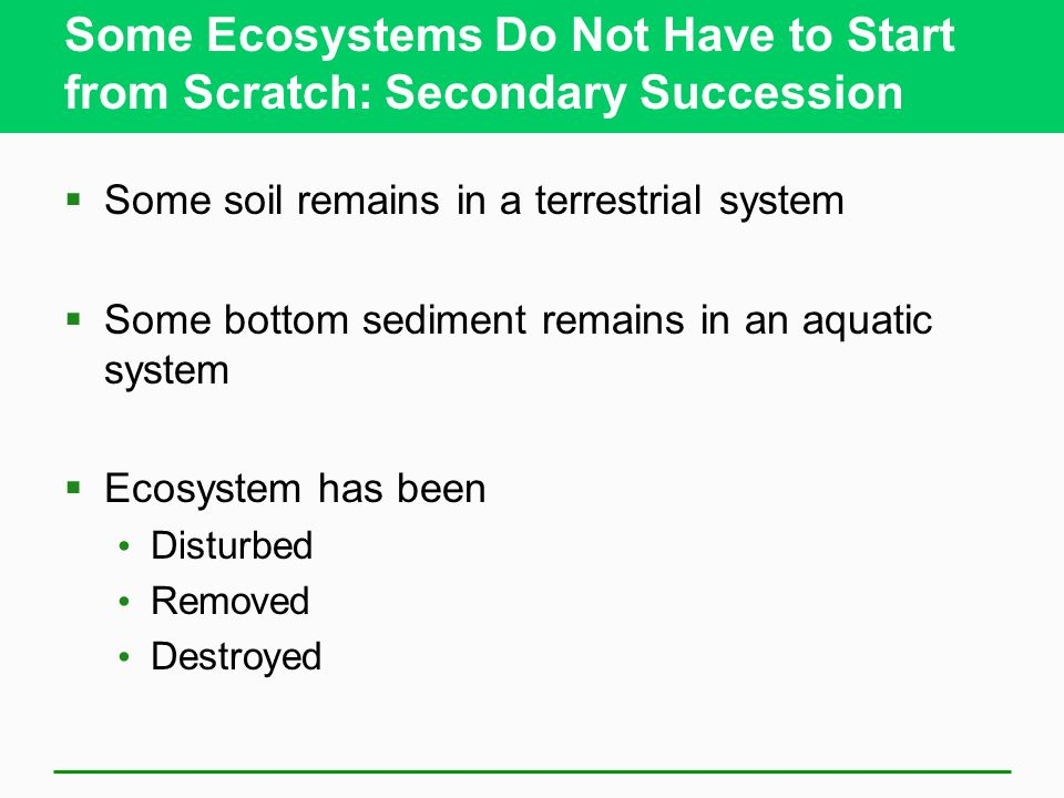 Some Ecosystems Do Not Have to Start from Scratch: Secondary Succession