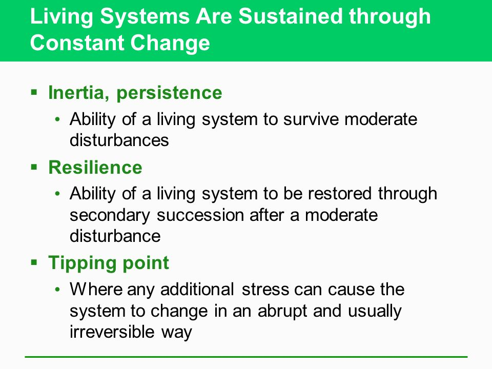 Living Systems Are Sustained through Constant Change