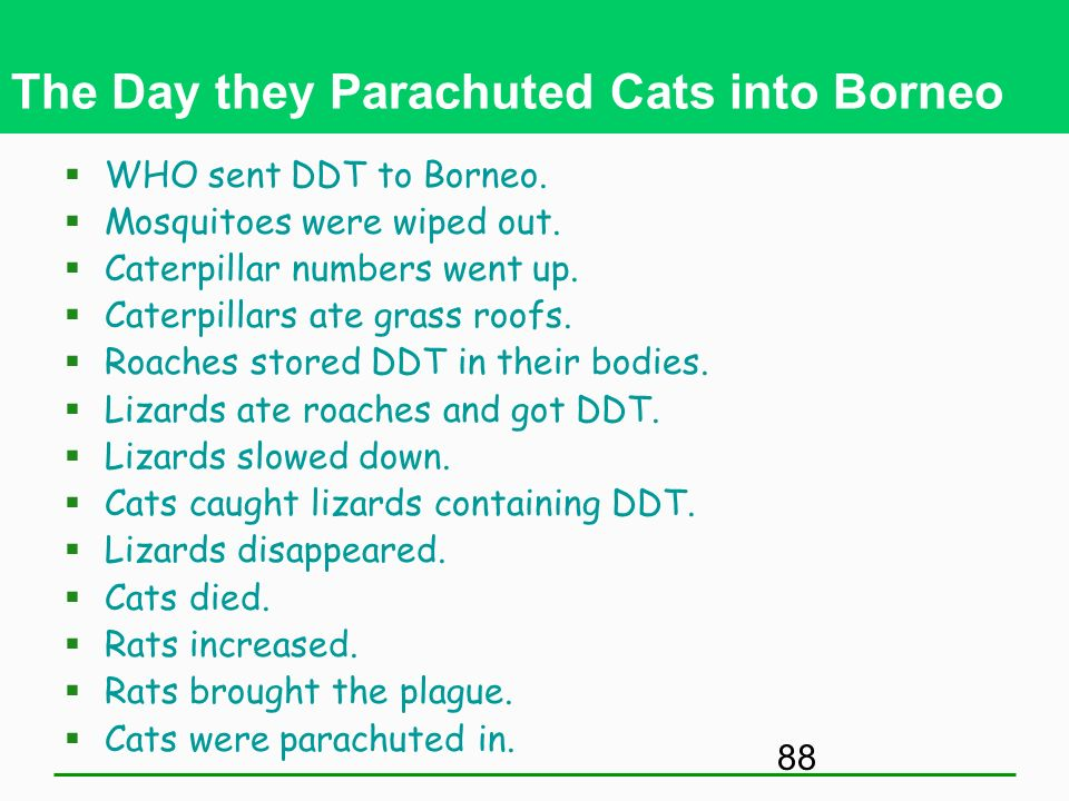 The Day they Parachuted Cats into Borneo