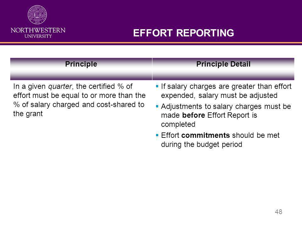 EFFORT REPORTING Principle Principle Detail