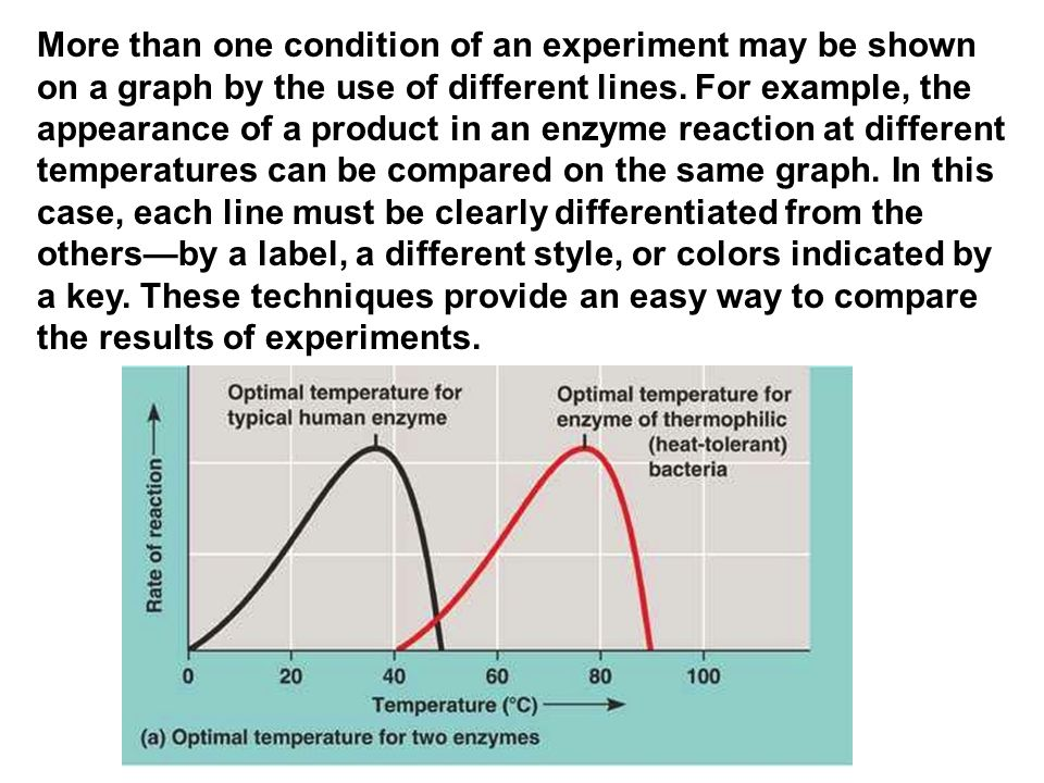 More than one condition of an experiment may be shown on a graph by the use of different lines.