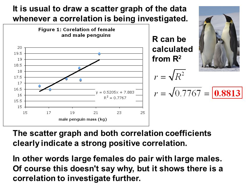 It is usual to draw a scatter graph of the data whenever a correlation is being investigated.