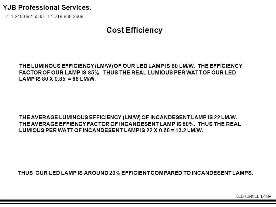 YJB Professional Services. T: 1-218-692-5535 T:1-218-838-2669