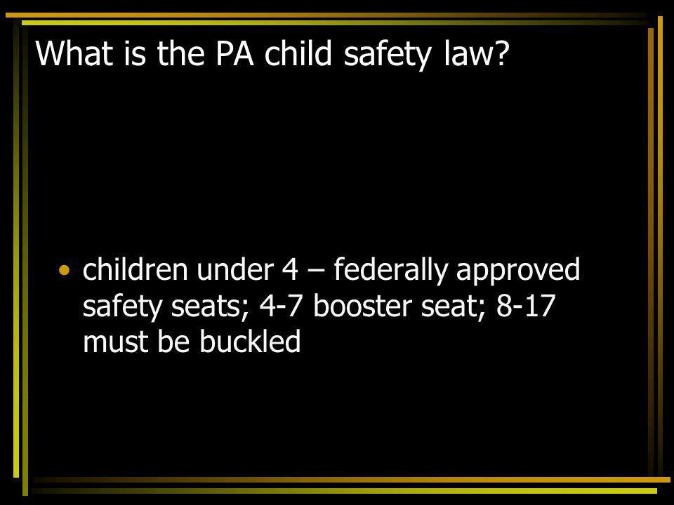 What is the PA child safety law