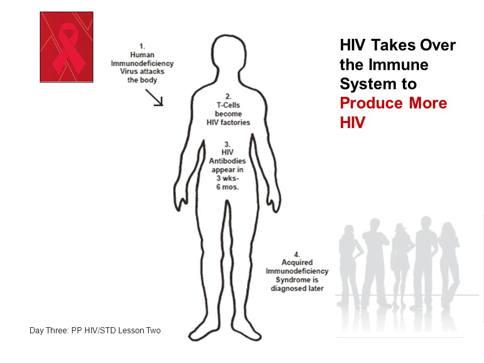 HIV Takes Over the Immune System to Produce More HIV
