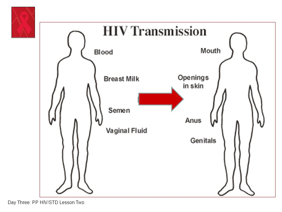 Day Three: PP HIV/STD Lesson Two