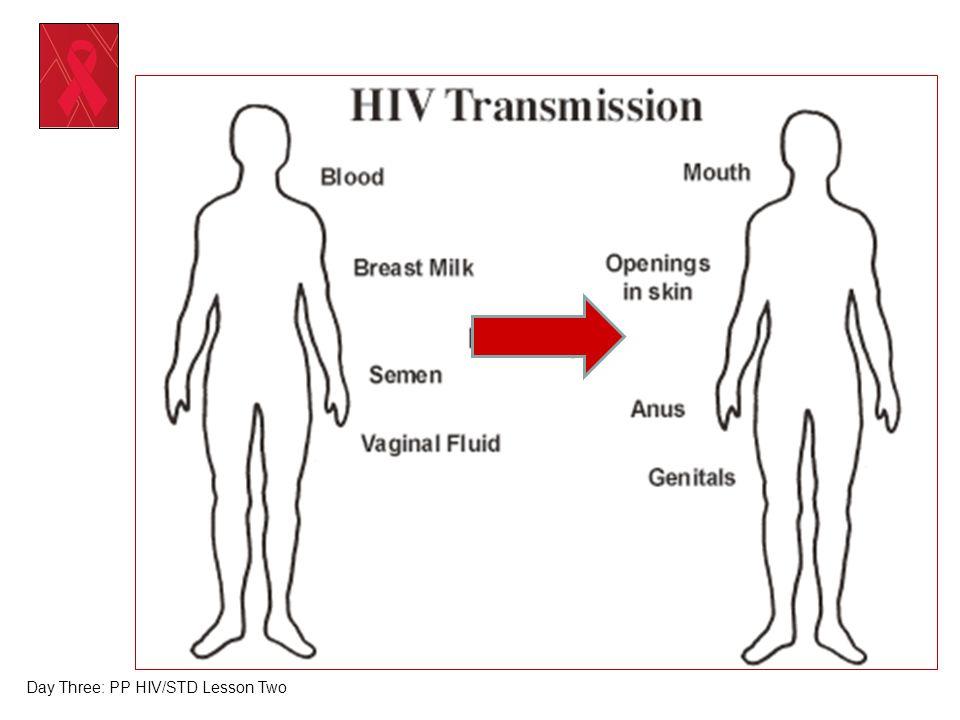 Day Three: PP HIV/STD Lesson Two