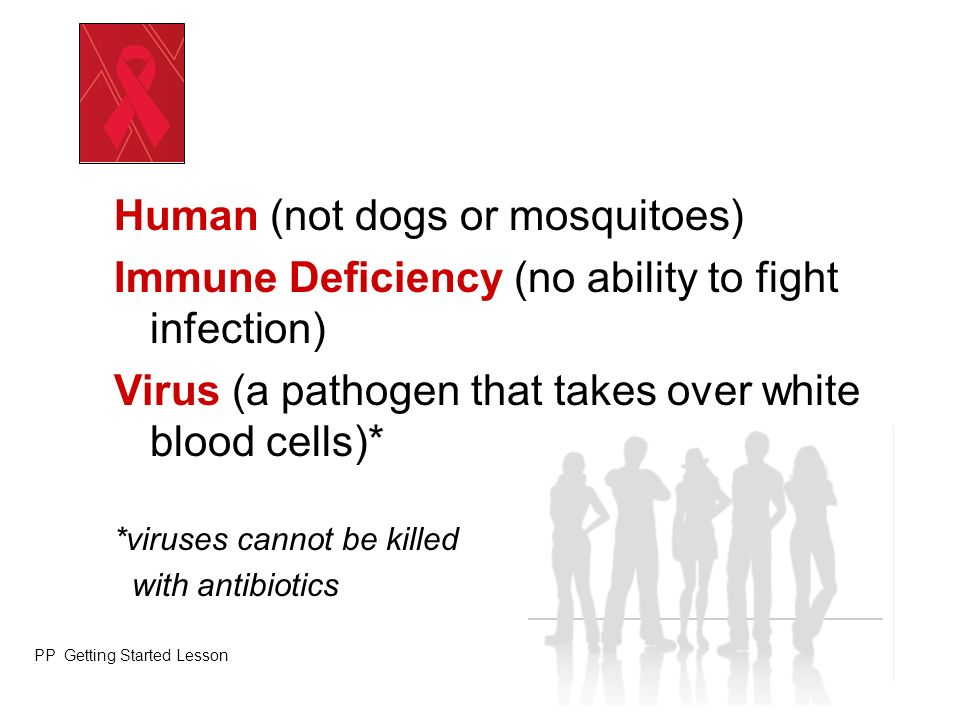 Human (not dogs or mosquitoes)