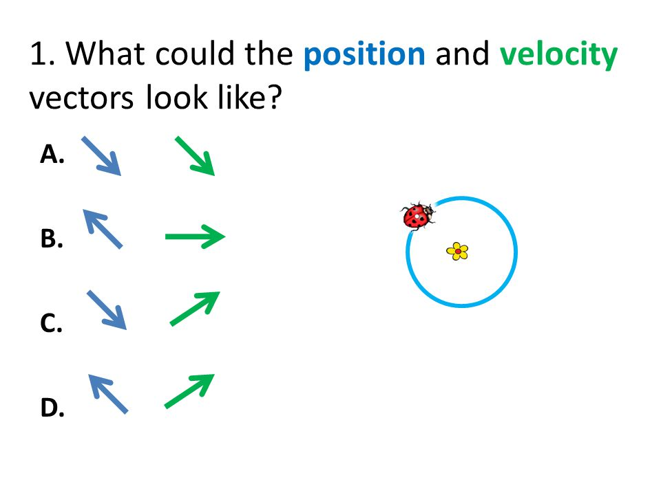 1. What could the position and velocity vectors look like
