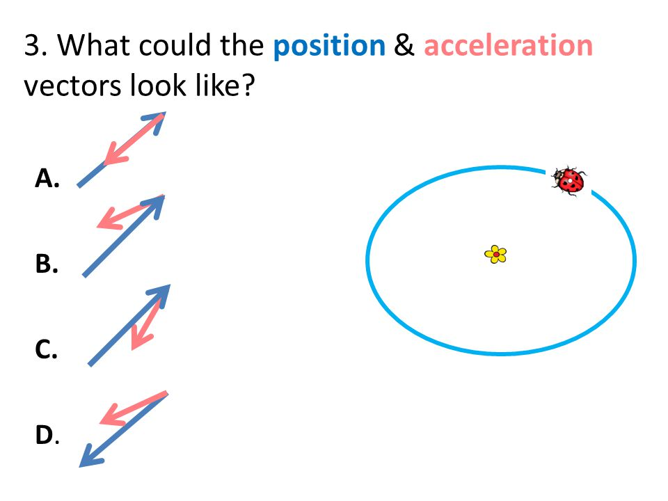 3. What could the position & acceleration vectors look like