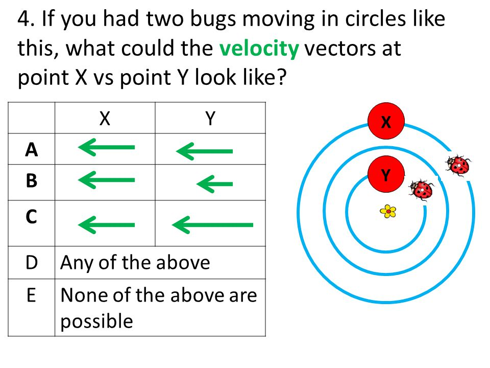 4. If you had two bugs moving in circles like this, what could the velocity vectors at point X vs point Y look like